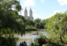 NYC CENTRAL PARK SUMMER 2017 TAKEN BY SCOUSE BIRD BLOGS